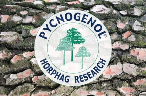 What Are the Benefits of Pycnogenol®? - UnFranchise Blog